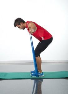 tonificar la espalda ejercicio pajaro