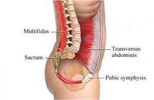 beneficios del pilates musculares