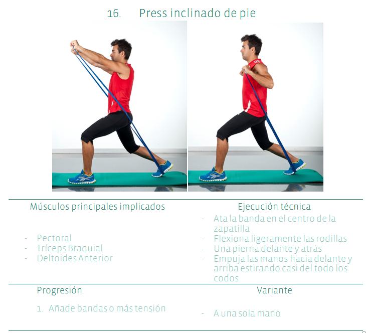 Gu a gratuita de ejercicios de musculaci n y adelgazar en casa - Material para hacer ejercicio en casa ...