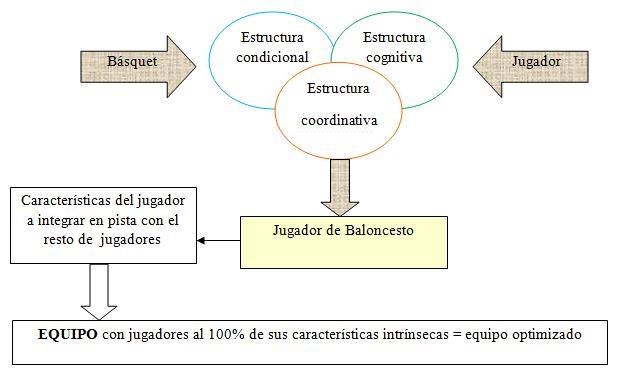 esquema de preparacion fisica en baloncesto
