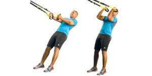 entrenamiento trx_Bíceps