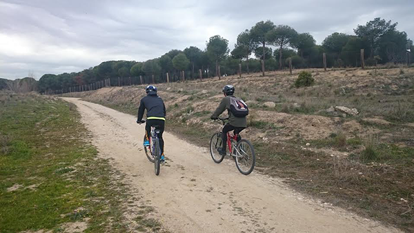 ejercicio aerobico bici