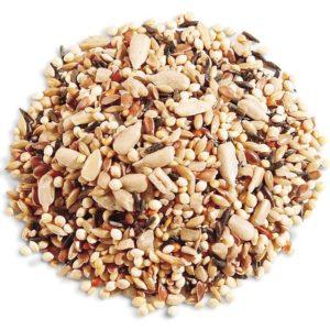 semillas grasa