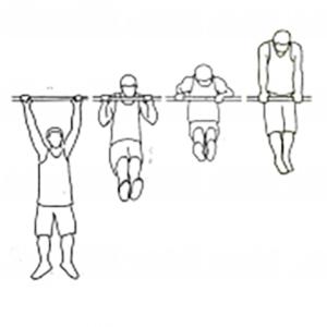 ejercicios de crossfit muscleup