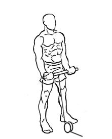 ejercicios biceps extension