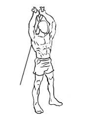 ejercicios biceps polea