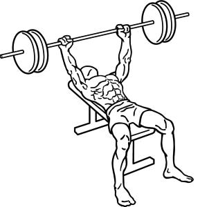 ejercicios biceps press