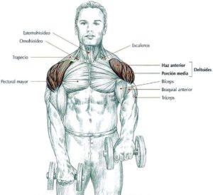 rutina de hombros frontal