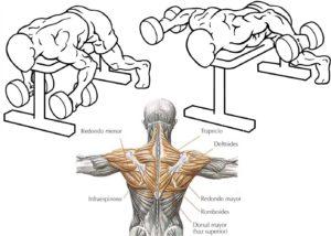 rutinas de gimnasio para hombres ejercicios