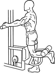 femoral ejercicios para piernas y gluteos
