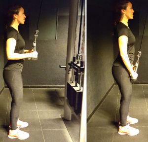 ejercicios de brazos triceps polea
