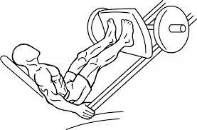 ejercicios gimnasio piernas