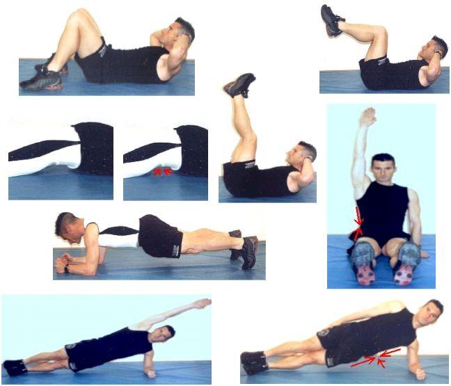 musculacion ejercicios