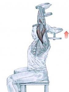 triceps con mancuernas normal