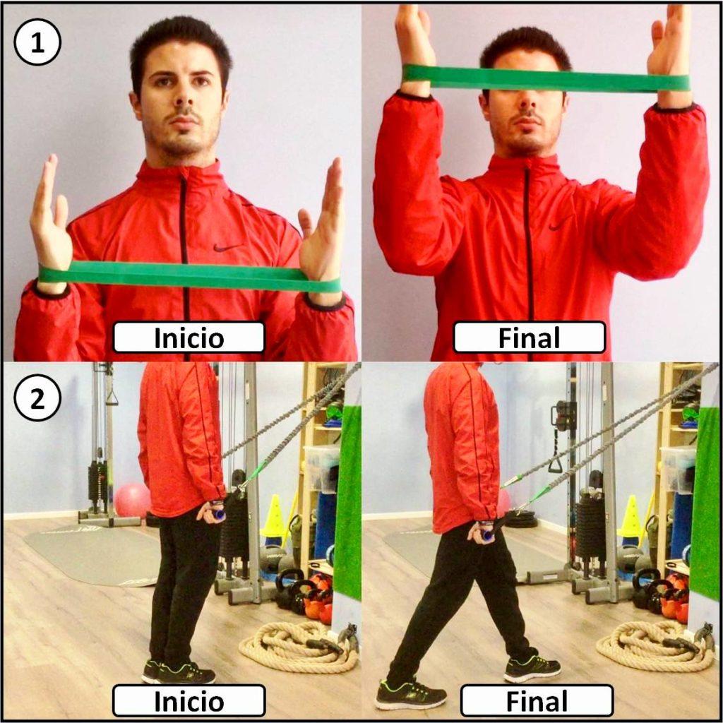 ejercicios hombro imagen