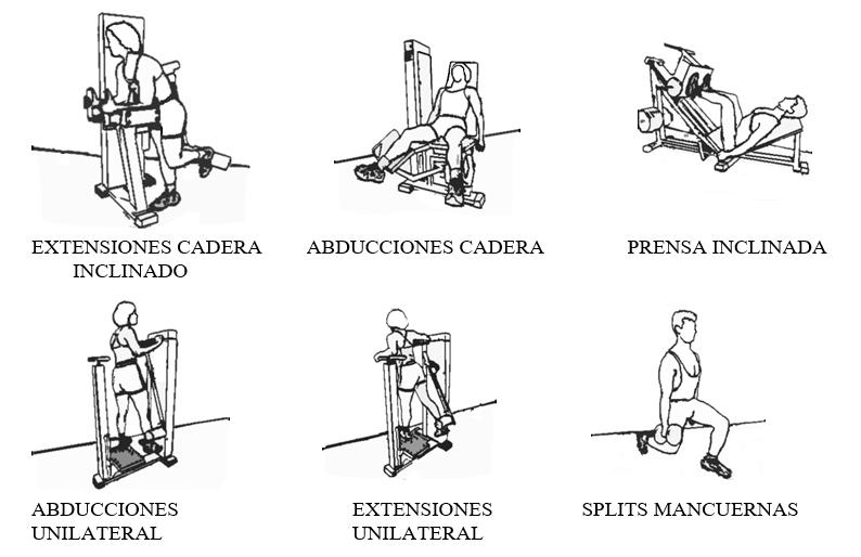 ejercicios para levantar gluteos imagen