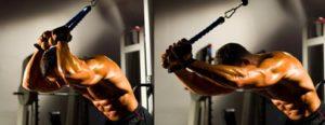 rutina biceps cabeza