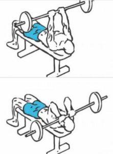 rutina biceps frances