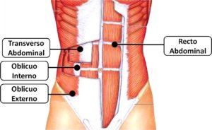 tablas de gimnasio abdomen
