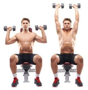 ganar masa muscular hombro