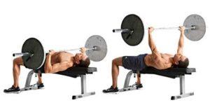 ganar masa muscular press