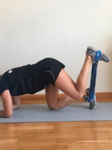 entrenamiento de pierna con elasticos cuadrupedia