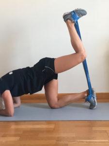 entrenamiento de pierna con elasticos cuadrupedia dos