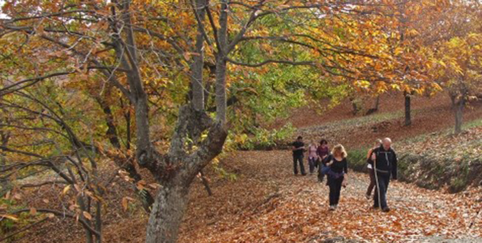 senderismo otoño