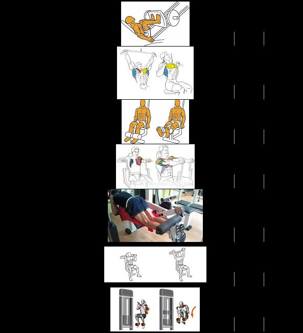 Rutinas para gimnasio que puedes terminar en media hora for Que es un gimnasio