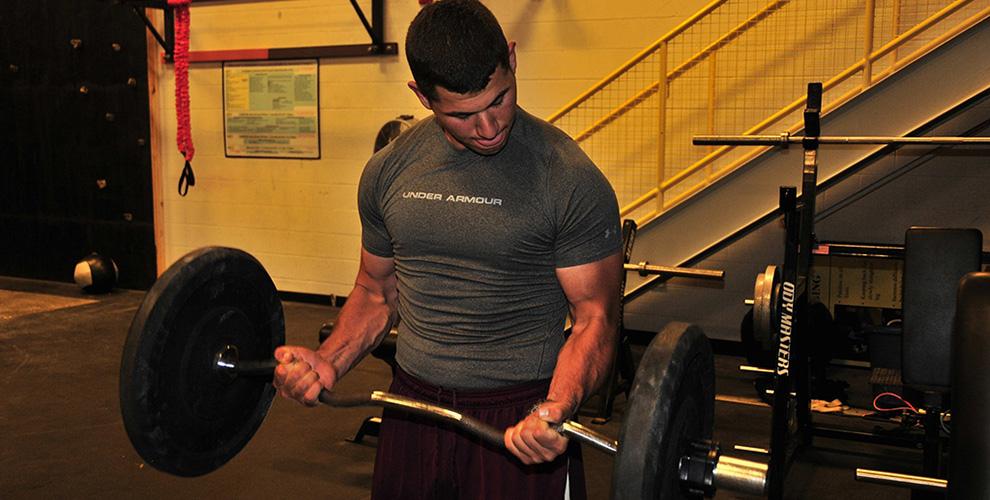 rutina torso pierna biceps