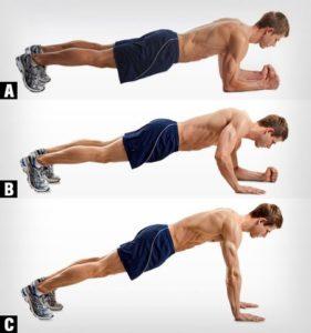 rutinas para gym dinamica