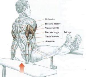 rutinas para gym triceps