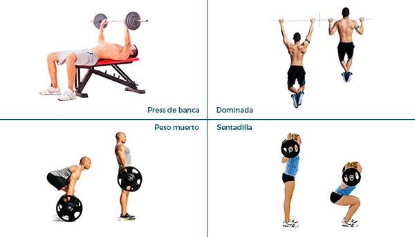 ejercicios diarios para estar en forma masa muscular