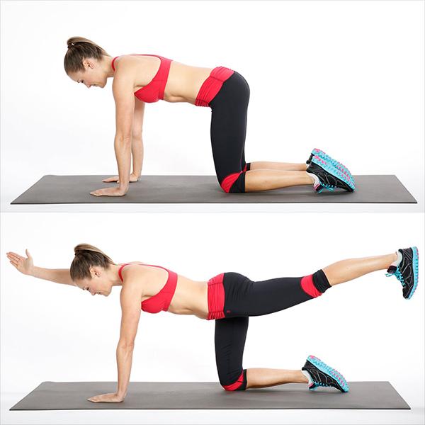 ejercicios para cintura y abdomen bird dog
