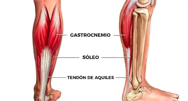 rutina de piernas para gym gemelos