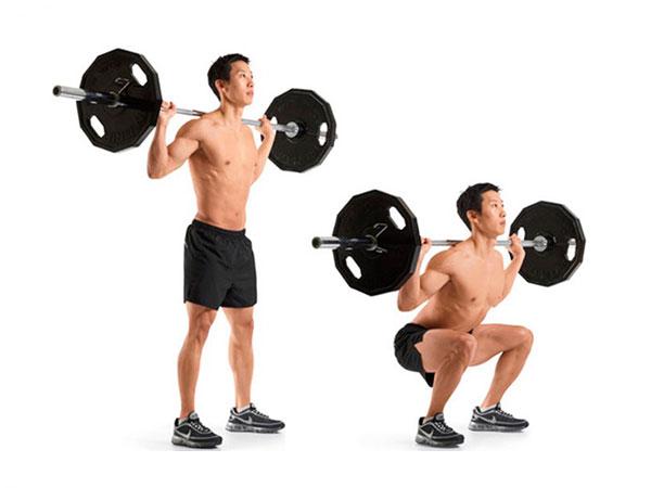 rutina de piernas para gym sentadilla barra