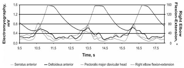 flexiones para pectorales fases