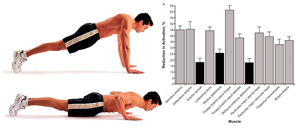 flexiones para pectorales clasica