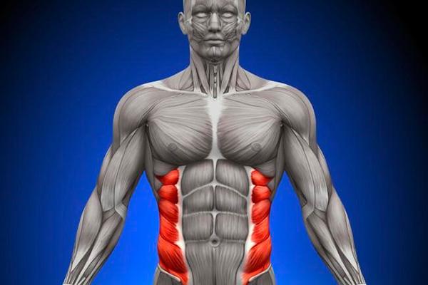 eliminar grasa delos costados del abdomen