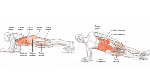 ejercicios de abdomen para mujeres planchas