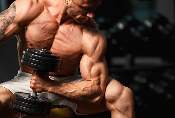 ganar peso musculo
