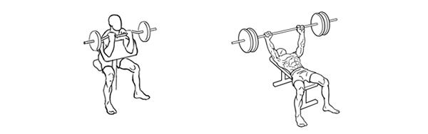 ejercicios con pesas biceps barra